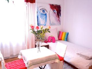 Nice and Central near to the Rail Station in Strasbourg/ FRANCE - Strasbourg vacation rentals