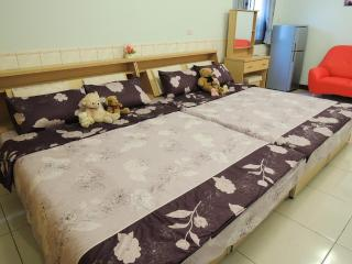 Annie's lovely pink studio - Kaohsiung vacation rentals