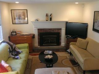 36 Pine Tree Rd - Osterville vacation rentals