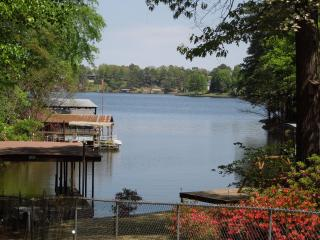 Cute & Cozy lake home with gorgeous views! - Hot Springs vacation rentals