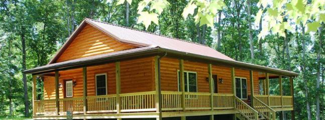 The Barred Owl Lodge, built 2014. - Brand New Construction:  The Barred Owl Lodge! - Luray - rentals