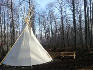 Wild Yough Glamping - Oakland vacation rentals