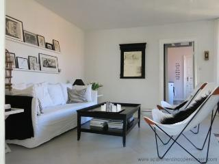 Absolute Center - Close To Metro - Inner City - 543 - Copenhagen vacation rentals