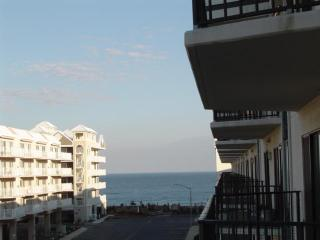 Royal Hawaiian 320---142nd St. - OC142 - Tiki Island vacation rentals