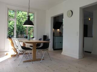 Large Copenhagen villa apartment with wonderful garden - Copenhagen vacation rentals
