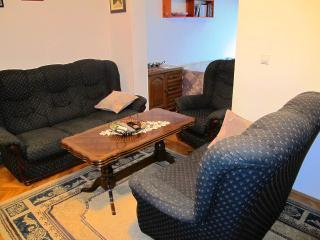 Apartment Radmila - 92141-A1 - Sutomore vacation rentals