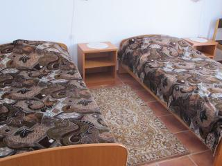 Apartments Tatiana - 92251-A3 - Bar vacation rentals