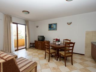 Apartments Radovan - 92571-A1 - Molunat vacation rentals