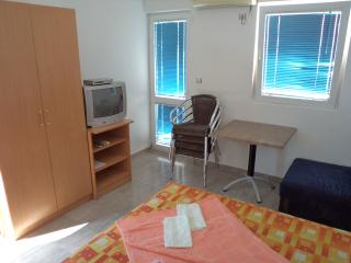 Apartments Svetlana-nina - 92641-A2 - Vodice vacation rentals