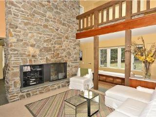 Houston Farm Villa - Stowe Area vacation rentals
