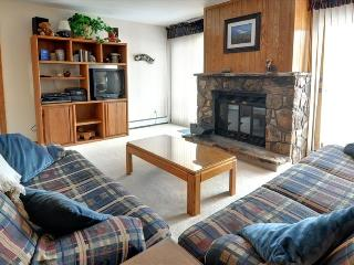BUFFALO VILLAGE 306: 2 Bed/2 Bath, Comfortable & Affordable, Elevator, Large Clubhouse, Lots of Trails Nearby - Silverthorne vacation rentals