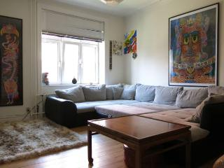 Amager - Close To Public Transport - 564 - Copenhagen vacation rentals