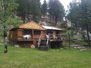 Lost Bison Cabin - South Dakota vacation rentals