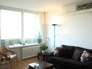 55m2 appartment with a view - Utrecht vacation rentals
