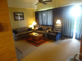 Sugartop 3025 - Banner Elk vacation rentals