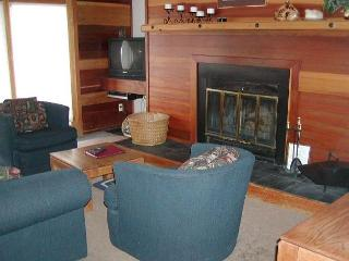 TR325 Timeshare Condo w/Wifi, Clubhouse, Mountain Views, Fireplace - Silverthorne vacation rentals