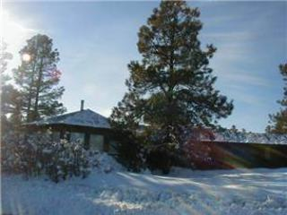 Self's House - Image 1 - Pagosa Springs - rentals