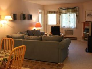 Well-furnished 1BR condo with fireplace - C1 237C - White Mountains vacation rentals