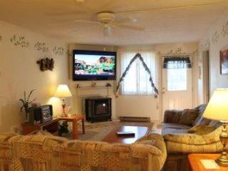 2BR first floor condo with stereo, DVD, Wi-Fi - B1 127B - White Mountains vacation rentals