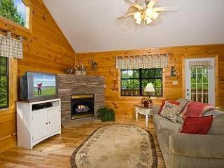 Brandon's Treehouse - Sevierville vacation rentals