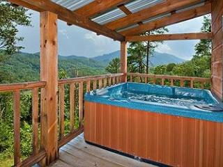 Once in a Lifetime - Sevierville vacation rentals
