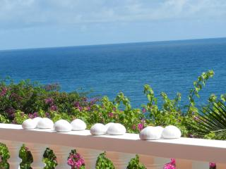 Heron's Flight -  Holiday Rental with private pool - Westerhall Point vacation rentals
