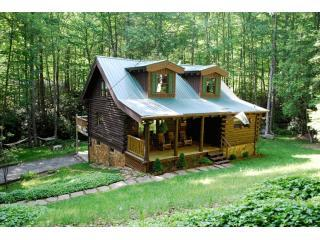 Running Creek Cabin - Andrews vacation rentals