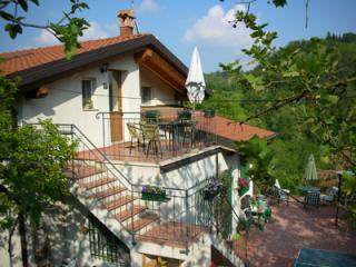 The house - Beautiful hillside  vineyard property - Monteveglio - rentals