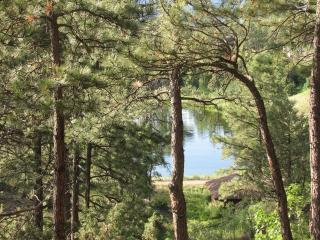View from our deck. - Comfortable Luxury in The Pines - Durango - rentals
