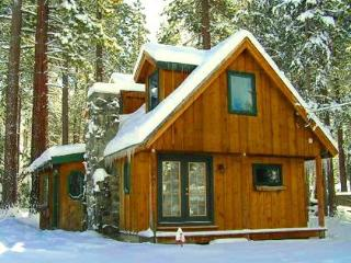 Beautiful 2/2 South Lake Tahoe Cabin - South Lake Tahoe vacation rentals