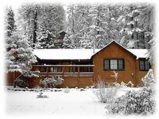 cabinsnow - Wonderful North Tahoe charm in Brockway/Kings Beach - Kings Beach - rentals