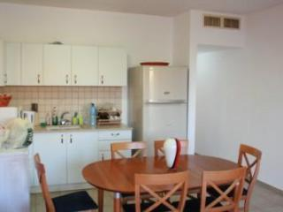 3 Bedroom apartment by the beach - Tel Aviv vacation rentals