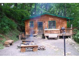 Firepit cabin. - Mountain Cabin At The Peak - Maggie Valley - rentals