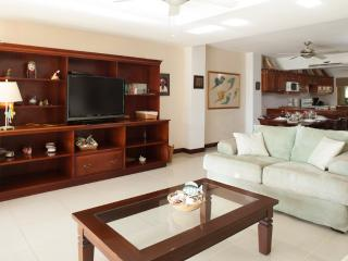 The Palms Condo 26 - Guanacaste vacation rentals