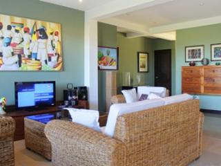 Maison Blanch Luxury Condo in Flamingo - Playa Potrero vacation rentals