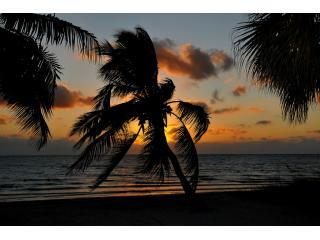 Bonita Palms Ft 003 - Last Minute Price! Condo on Imperial River. - Bonita Springs - rentals