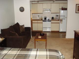 queensize sofabed, full kitchen and air-conditioning. - Walk to Train Station & most everything in Salem - Salem - rentals