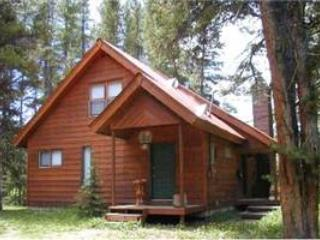Shell Cabin - Image 1 - Grand Lake - rentals