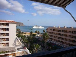 Balcony View - 2 bed Sea Front Apartment in Los Cristianos - Los Cristianos - rentals
