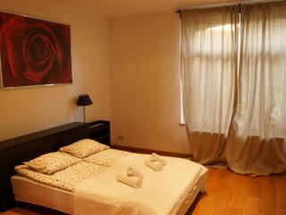 Brussels Buzz - Brussels vacation rentals
