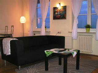 Brzozowa Vistula - Brussels vacation rentals