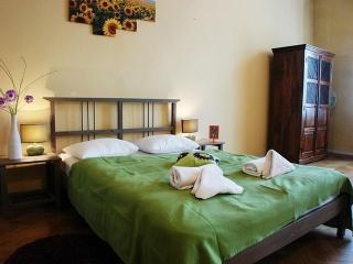 Cracovia 1 Kazimierz - Brussels vacation rentals