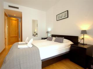 Passeig de Gracia Residence 12 - Brussels vacation rentals