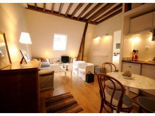 - Cozy nest in the  Latin quarter - Image 1 - 6th Arrondissement Luxembourg - rentals