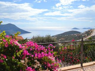 Kalkan Luxury Villa, Private Pool, Fantastic Views - Kalkan vacation rentals