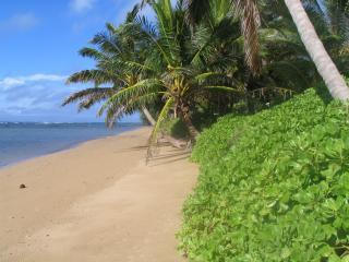 our beach.JPG - Aloha Ho'okipa - Molokai's Friendliest Beach House - Molokai - rentals