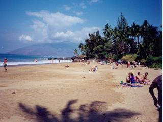 Beach Across From Condo - Great Value, Great Location, Across from Beach - Kihei - rentals