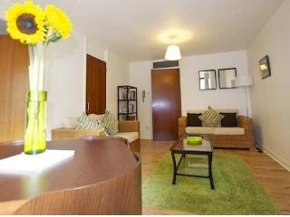 Apartments City Central Edinburgh - Edinburgh vacation rentals