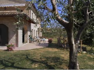 Villa in the Vineyard - Montelparo vacation rentals
