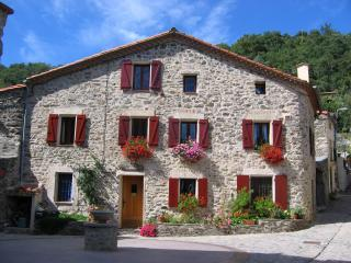 B&B Le Troubadour in French Pyrenees - Perpignan vacation rentals